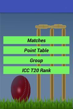 Twenty 20 Cricket World Cup poster