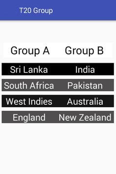 Twenty 20 Cricket World Cup screenshot 3