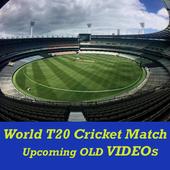 T20 Cricket Match 2017 VIDEOs icon