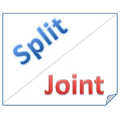 Split, Joint File. Free icon