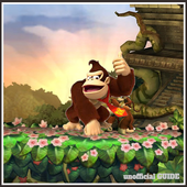 Guide Of Donkey Kong Country icon