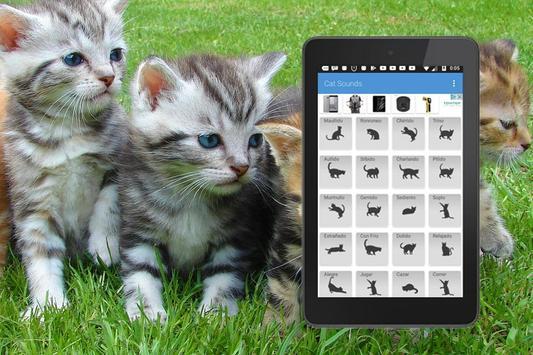Sonidos Gatos apk screenshot