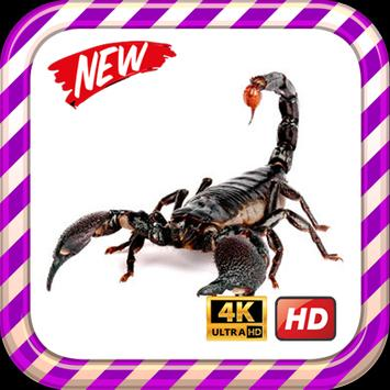 Scorpion King Wallpaper HD screenshot 6