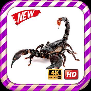 Scorpion King Wallpaper HD screenshot 7