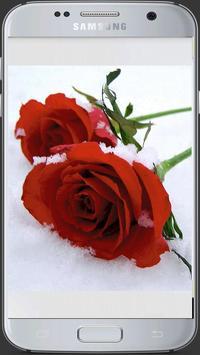 HD Fresh Flowers screenshot 2