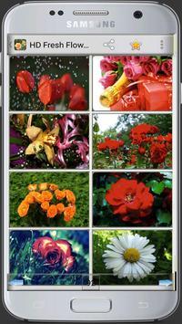 HD Fresh Flowers screenshot 9