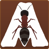 Ant Road icon