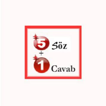 5söz 1cavab poster