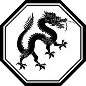 flappy dragon icon