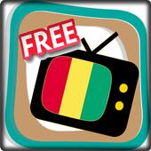 Free TV Channel Guinea icon