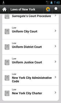 NY Laws screenshot 5