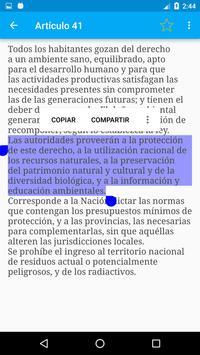 Constitución de Argentina screenshot 3