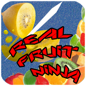 Real Fruit Ninja icon