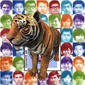 Keathwa Tiger icon
