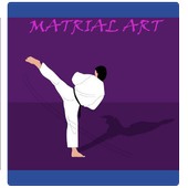 types of martial arts icon
