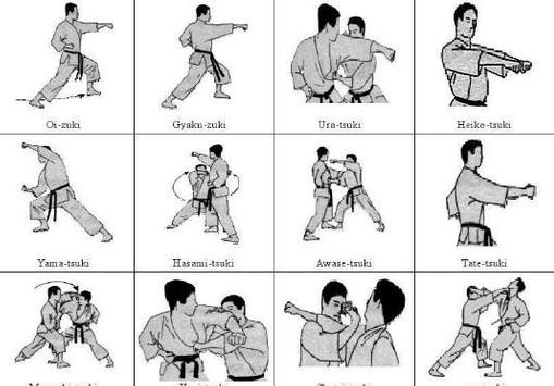 types of martial arts screenshot 1