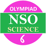 NSO 6 Science Olympiad