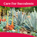 How To Care For Succulents APK