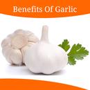 Health Benefits Of Garlic APK