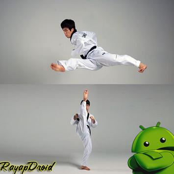 Best Taekwondo Training Strategy poster