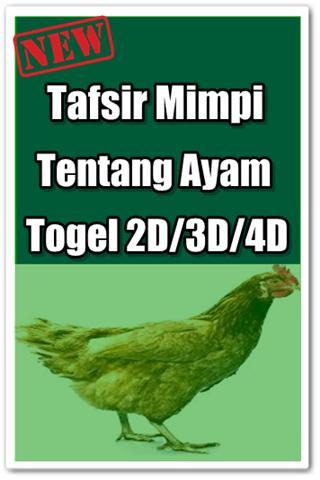 78 Gambar Ayam Togel Paling Keren