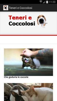 Teneri e Coccolosi poster