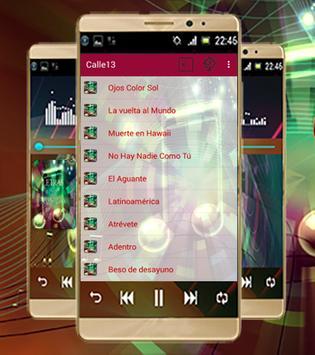 Calle 13-Las Mejores Canciones screenshot 1
