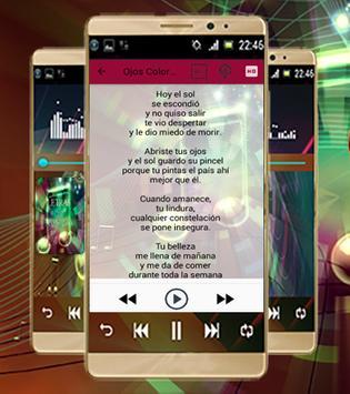 Calle 13-Las Mejores Canciones screenshot 2