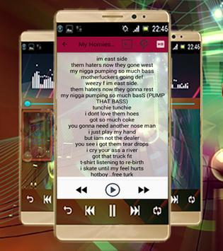 Lil Wayne-Lyrics & Songs apk screenshot