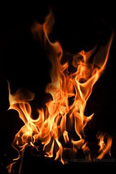 Fire photo frames screenshot 3