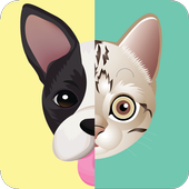 เกมส์ทายหมาแมว icon
