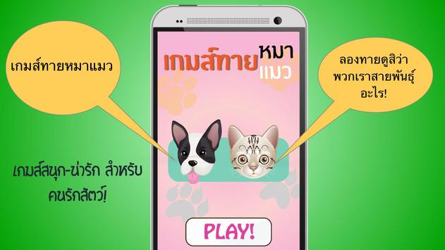 เกมส์ทายหมาแมว poster