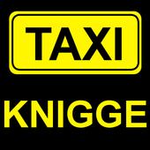 Taxi-Knigge Button icon