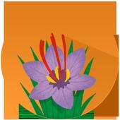 Saffron Recipes icon