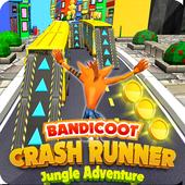 Crash Runner Dog icon