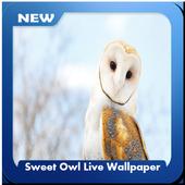 Sweet Owl Wallpaper icon