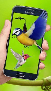 Flying Birds 3d Live wallpaper screenshot 2