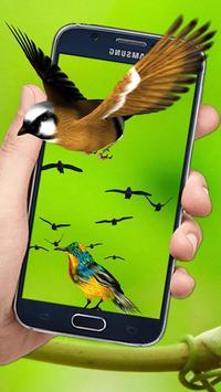 Flying Birds 3d Live wallpaper screenshot 7