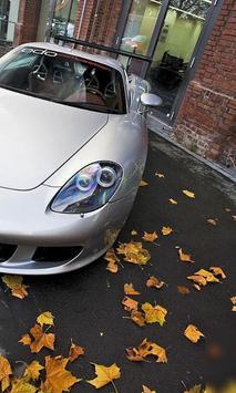 Jigsaw Puzzles Porsche Carrera GT apk screenshot