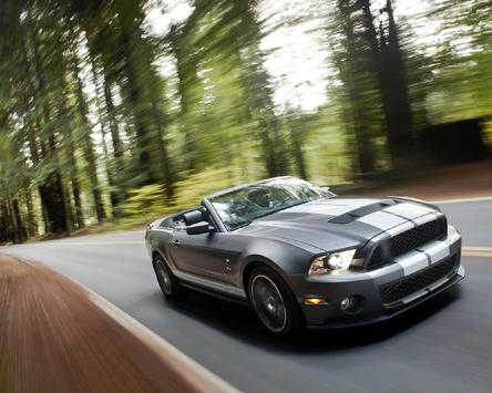 Jigsaw Puzzles Ford Shelby screenshot 3