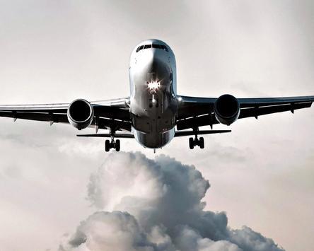Puzzle Passenger Airliner screenshot 3