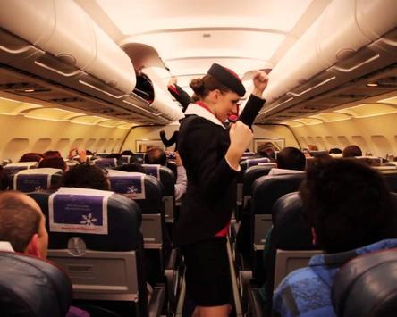 Puzzle Passenger Airliner screenshot 4