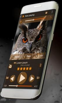 Cute owl Music Player Skin poster