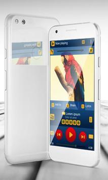 Parrot PlayerPro Skin apk screenshot