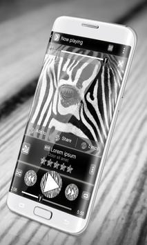 Zebra PlayerPro Skin poster