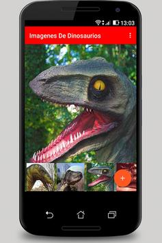 Images and Photos of Dinosaurs poster