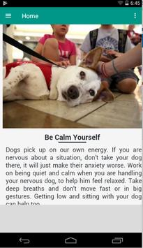 Relax Dog poster