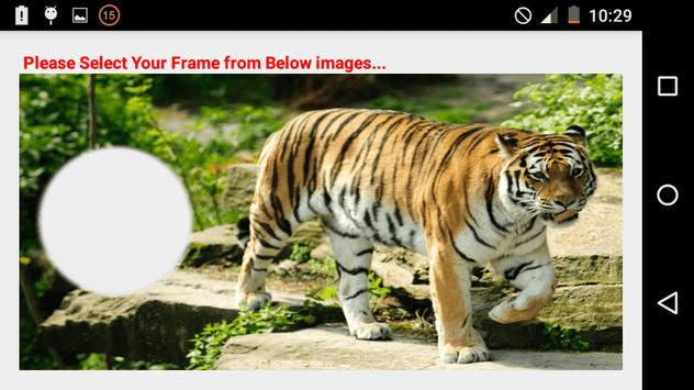 My Tiger Photo Frames Free APK Download - Free Photography APP for ...