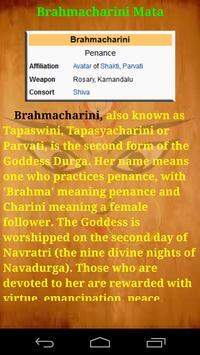 Brahmacharini Mata screenshot 3
