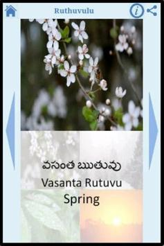 Telugu for Kids screenshot 3